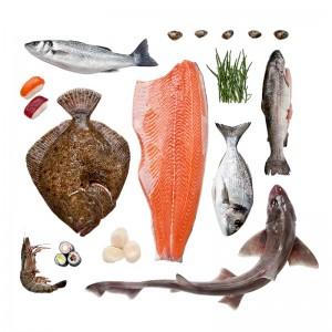 Visgroothandel Seafood Centre Over